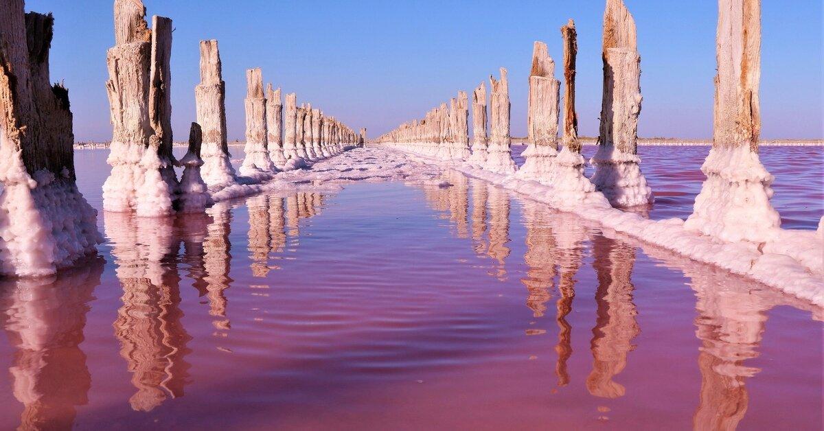 Розовое озеро – Сасык-Сиваш