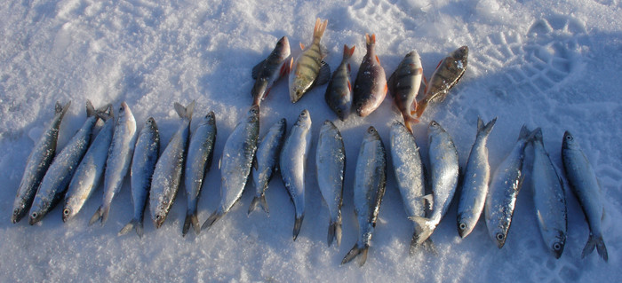 Зимняя рыбалка на Тургояке